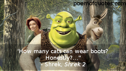 A quote from Shrek 2.
